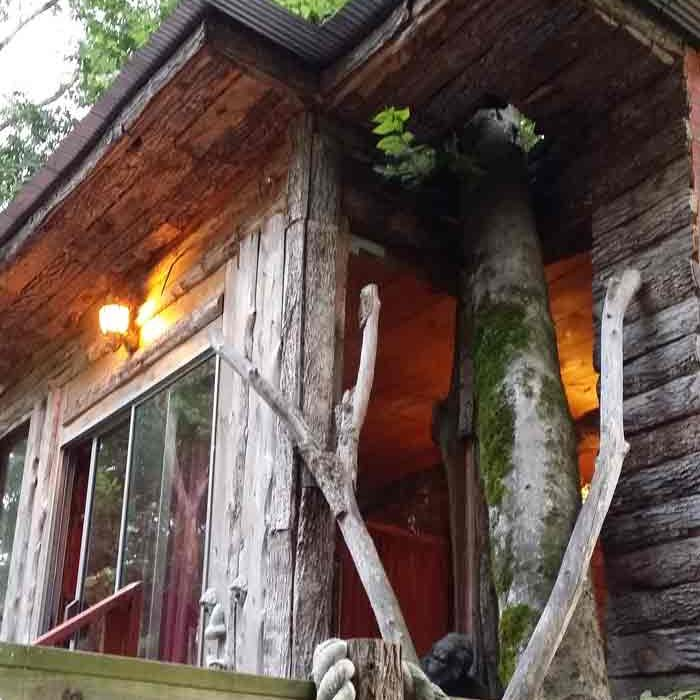 our treehouse room at Diamond John's near Crater of Diamonds State Park Arkansas family fun, pet friendly, adventure, rock hunting, camping