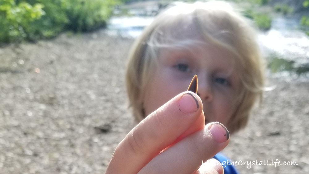 A Boy and his Shark Teeth